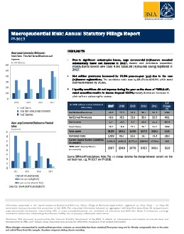 Macroprudential Risk - Annual Statutory Filings Report-FY 2017