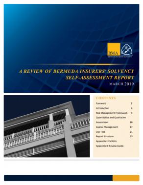 Review of Bermuda Insurers' Solvency Self-Assessment Report