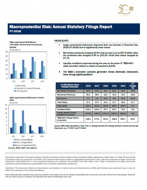 Macroprudential Risk: Annual Statutory Filings Report FY-2018