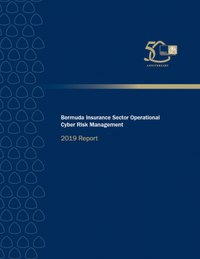 Insurance Sector Operational Cyber Risk Management Report - 2019 Report