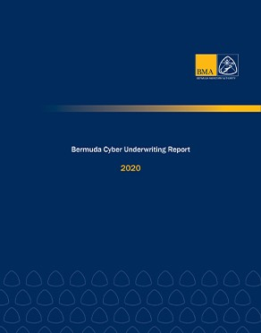 Bermuda Cyber Underwriting Report - 2020