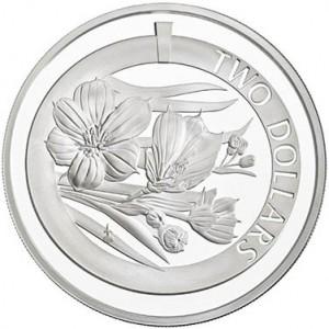 Silver Bermudiana
