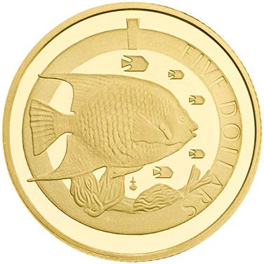 Gold Proof 1/20th Blue Angel Fish Coin